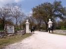 domusdea dee mediterraneo 2010-1