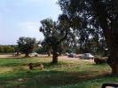 domusdea dee mediterraneo 2010-26