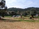 domusdea dee mediterraneo 2010-28