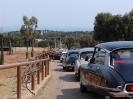 domusdea dee mediterraneo 2010-31
